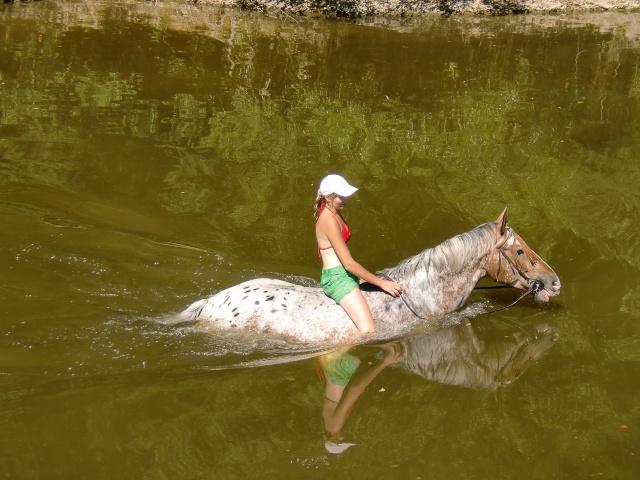 Concours photo : Le cheval et l'eau  Cimg0310
