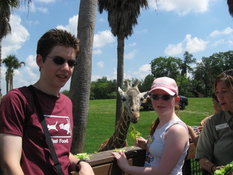 4 semaines floridiennes ... de folie(s)!! Ca c'était en 2008...  2016 c'est Le retour !  - Page 5 Girafe15