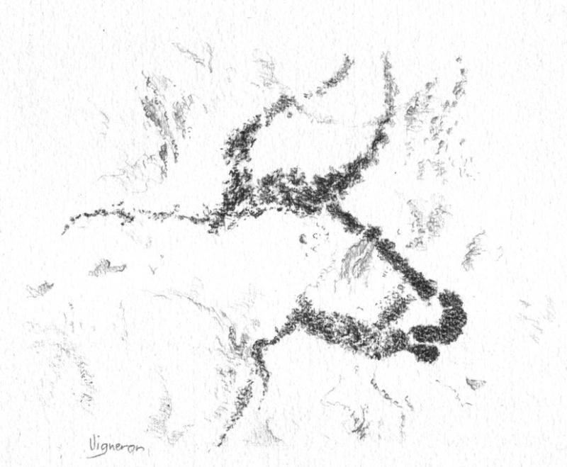 Aquarelles et préhistoire Auroch10