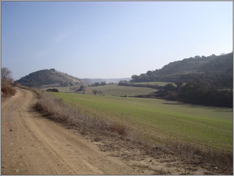Divendres 22-02-08 La Segarra 1dsc0112