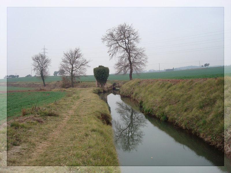 Sortida Dijous 21-02-2008 La Llum 710