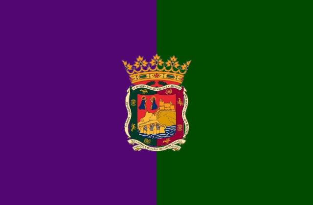 La ville de Malaga Flag_o10