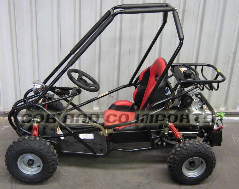 FS - 110cc Dune Buggy Go11