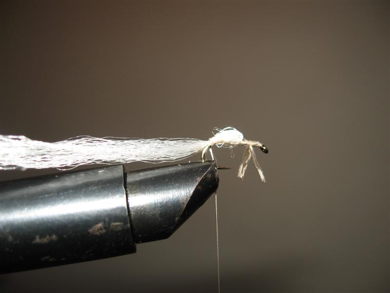 Mala bela - varijanta 3. Img_1622