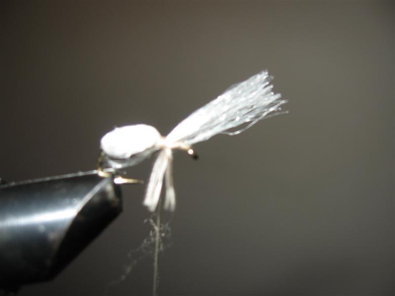 Mala bela - varijanta 3. Img_1624