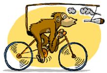 Organización - fines de semana (Horas y lugar de salida,...) - Página 3 Mono_e10