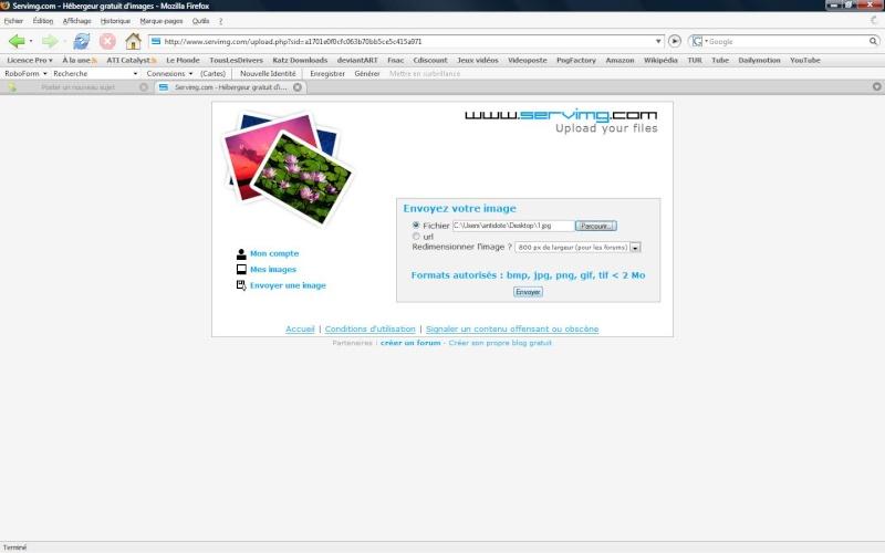 Comment insérer une image sur un forum 310