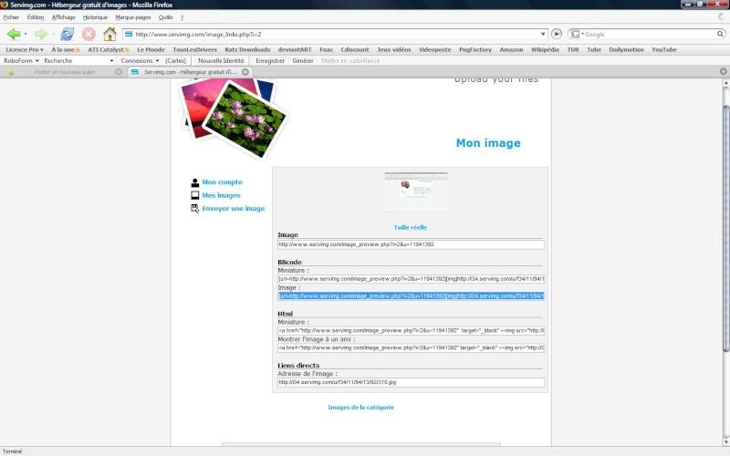 Comment insérer une image sur un forum 410