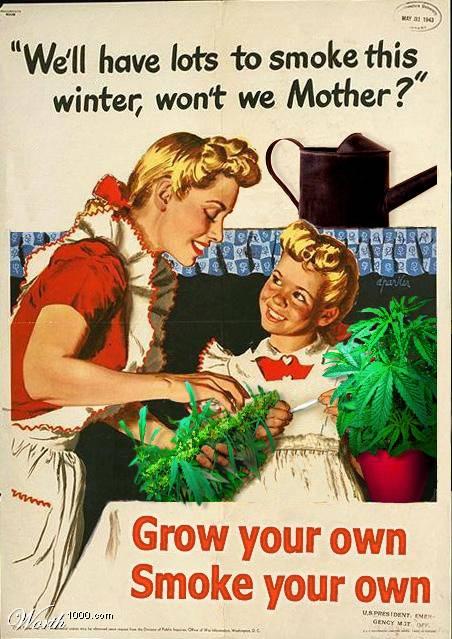 Sin seudonimo Grow_y10