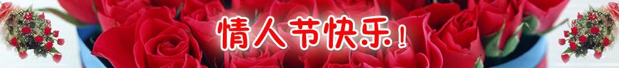 情人节快乐,快乐情人节!! Ieia-110