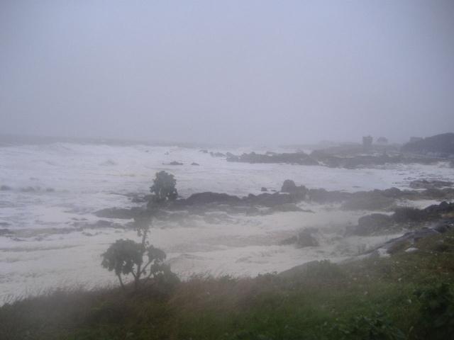 Tempête du 15 janvier 2008 Le_cro12