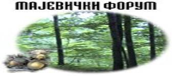 Logo foruma Predlo10