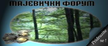Logo foruma Predlo12