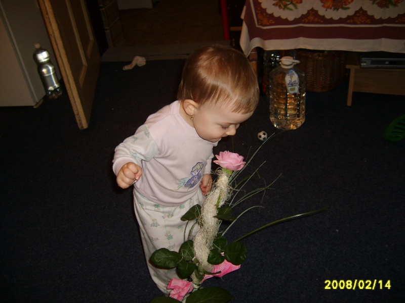 Valentin 2008 S6001514