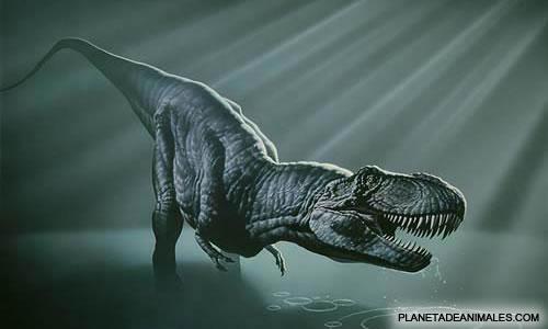 Historia del Tiranosaurio 9211