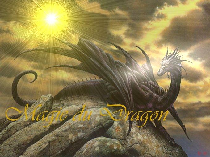 Forum de la Guilde Magie du Dragon