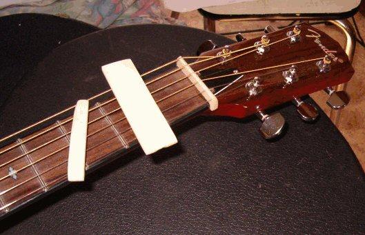 achat guitare à résonateur Bonesw10