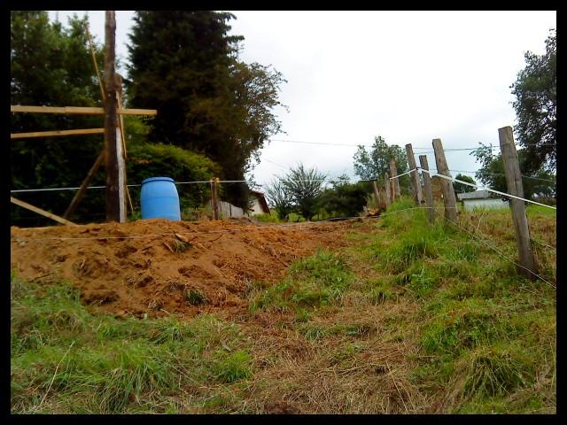 Construction d'un abri pour chevaux Dsc01412