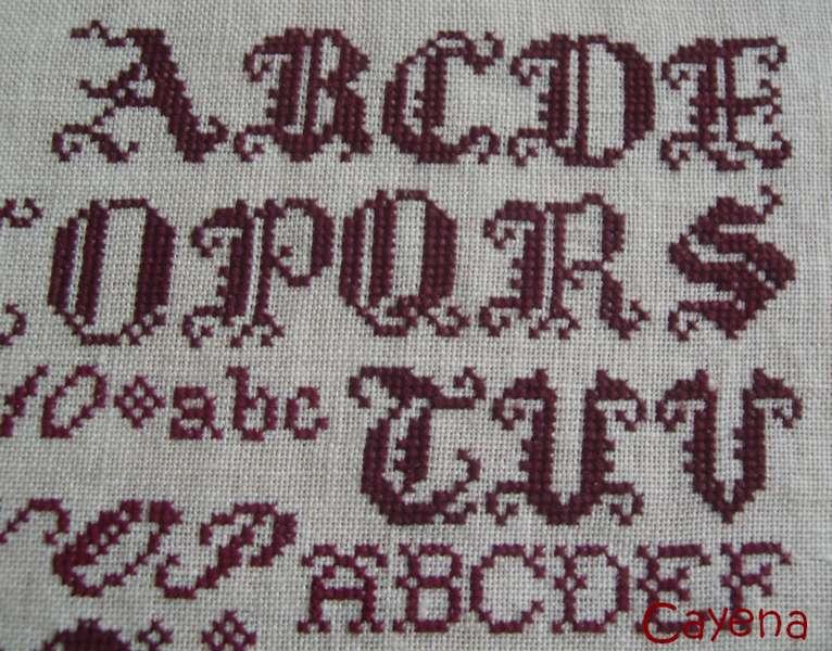 SAL Génération de brodeuses d'AMAP - ***Début le 20 février 2010 !*** - Page 4 Etape212