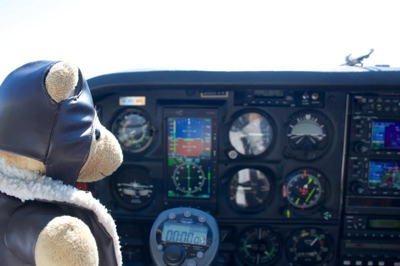 Les vols de la mascotte - Page 10 Img_3010