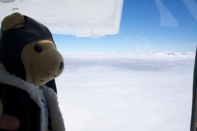 Les vols de la mascotte - Page 10 Img_3012