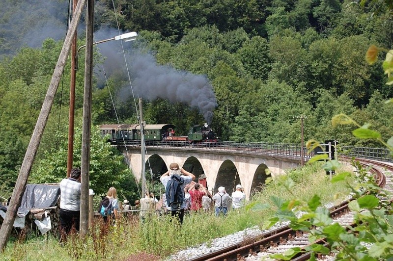 Dampfzügle zwischen Rudersberg und Welzheim B0110