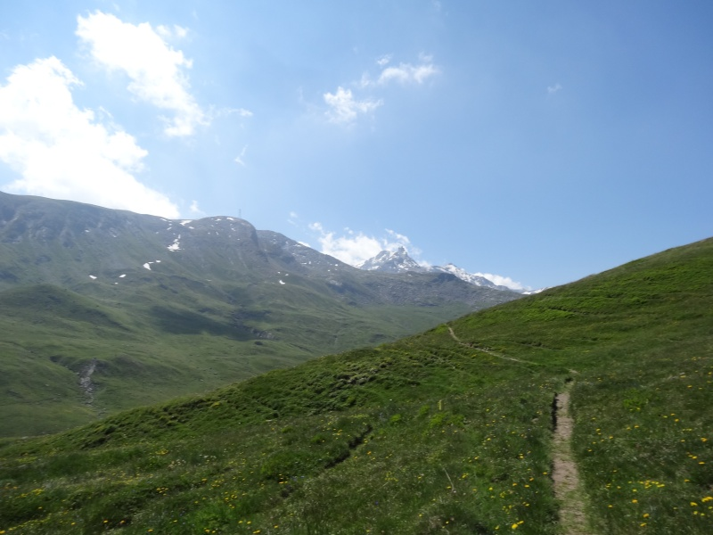 Fort du Mont Froid depuis la route du Petit Mont Cenis Dsc00721