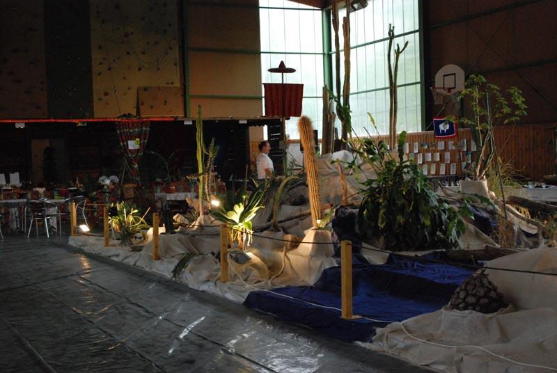 Le décor végétalisé de la Saint-Hip'aux cactus 2010 Dacor_13