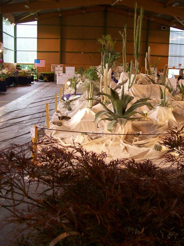 Le décor végétalisé de la Saint-Hip'aux cactus 2010 Dacor_30