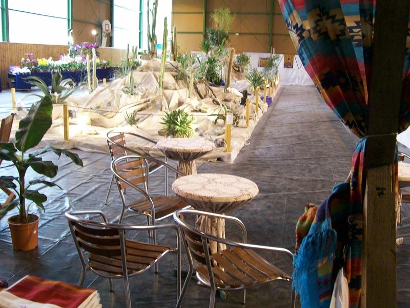 Le décor végétalisé de la Saint-Hip'aux cactus 2010 Dacor_32