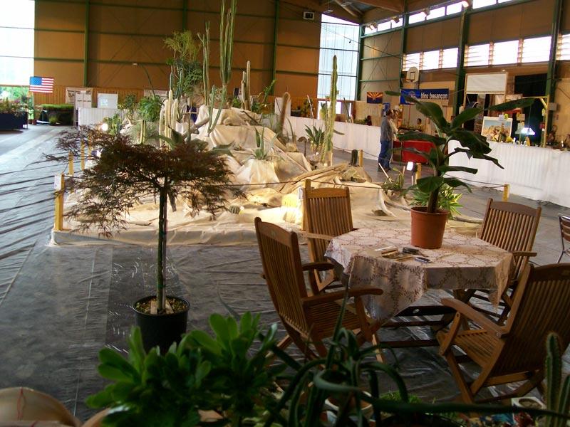 Le décor végétalisé de la Saint-Hip'aux cactus 2010 Dacor_33