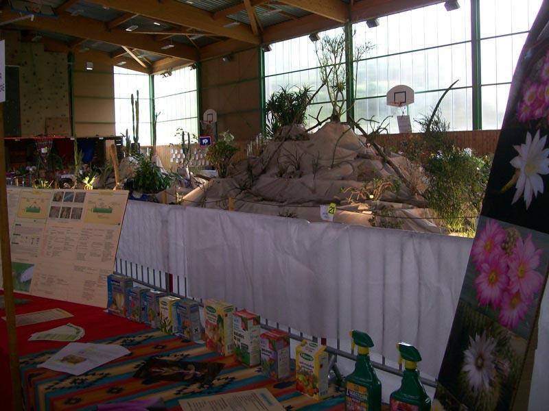 Le décor végétalisé de la Saint-Hip'aux cactus 2010 Dacor_37