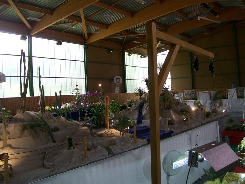 Le décor végétalisé de la Saint-Hip'aux cactus 2010 Dacor_38
