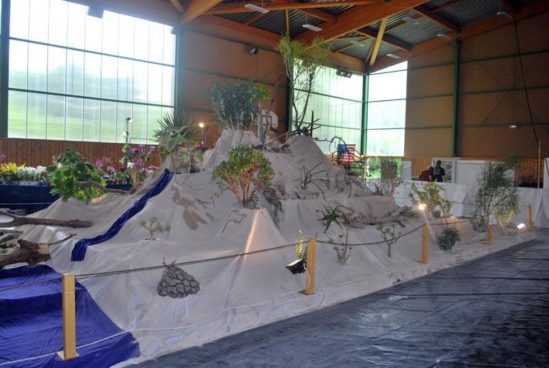 Le décor végétalisé de la Saint-Hip'aux cactus 2010 Dacor_42