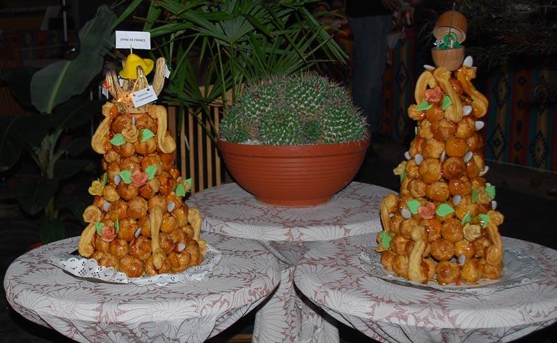 Le décor végétalisé de la Saint-Hip'aux cactus 2010 Dacor_55