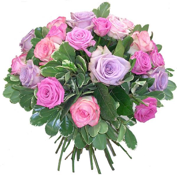 anniversaire des membres Fleur_10
