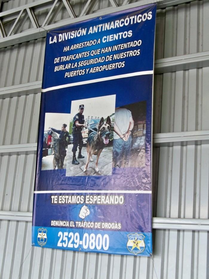 "AmericaCentrale 2013: ""Yo soy italiano, no gringo"" Resiz370"