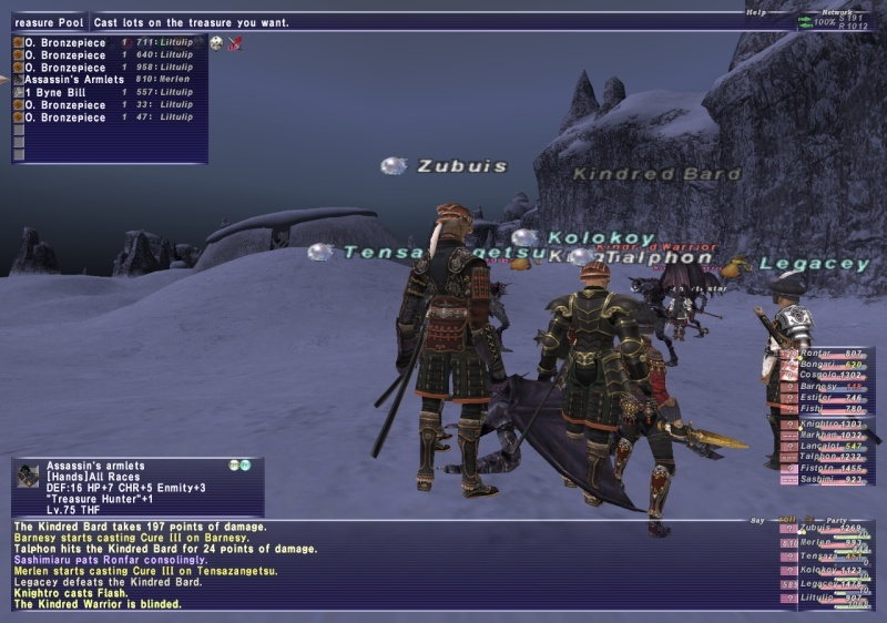 Dynamis Merlen and his brother Surcoat Ffxi_271