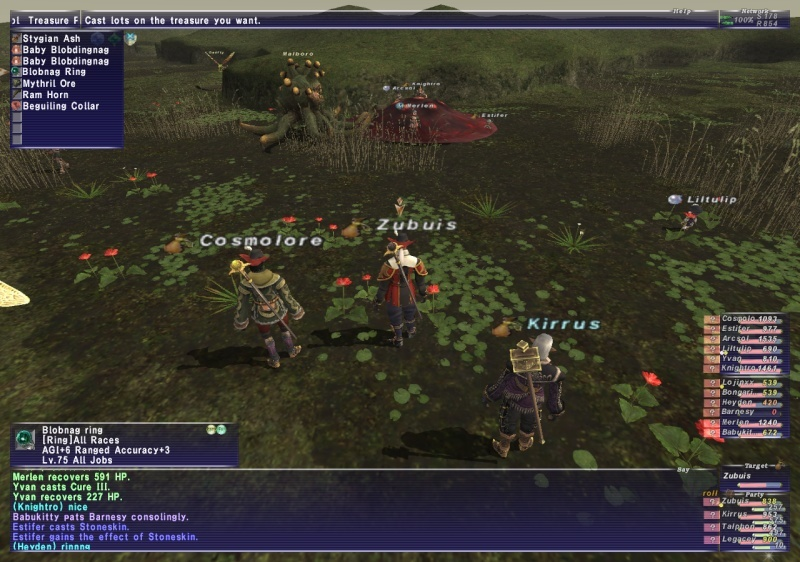 VNM's and other misc. stuff Ffxi_285