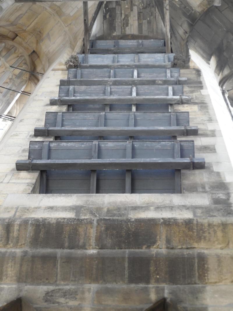 La cathédrale de Reims Sam_0922