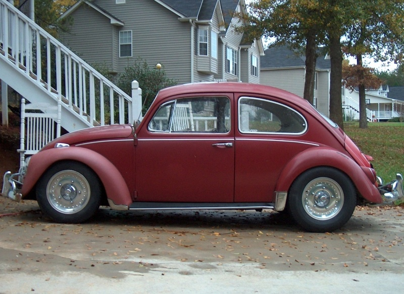 66 Bug Project Cal-lo11