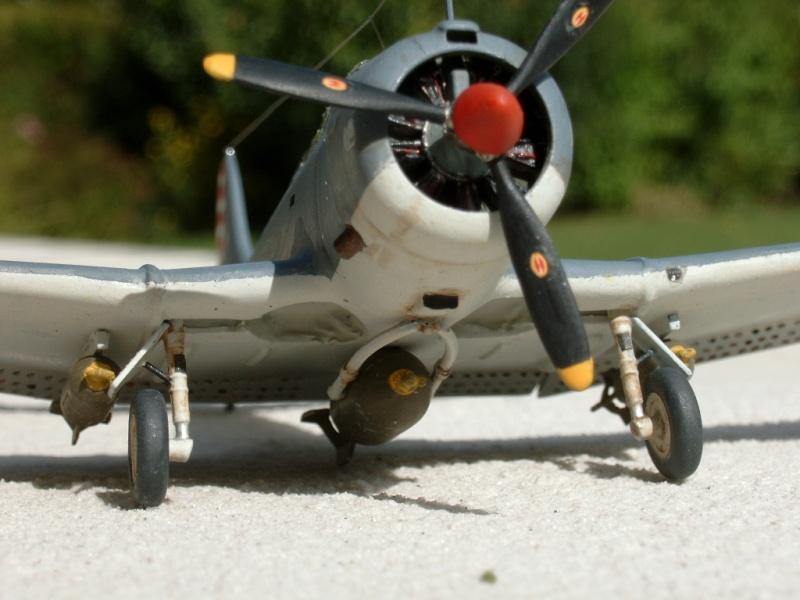 quelque avion ayant rapport avec la marine Dauntl17