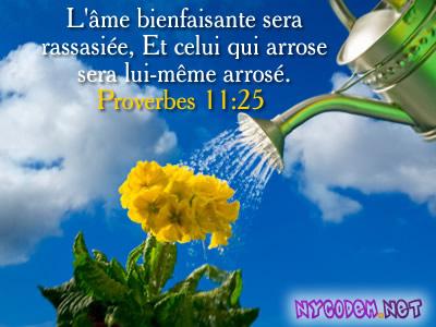 Une prière à méditer    Sera_a10