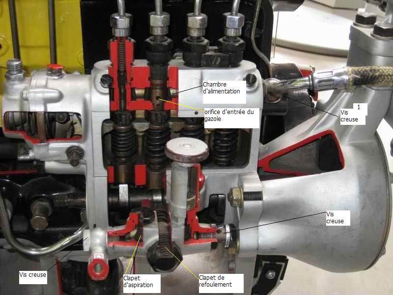 amorcage pompe injection 421 sur moteur 616.911 - Page 2 Musae_10
