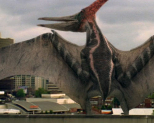 Agnurognathus Primev11