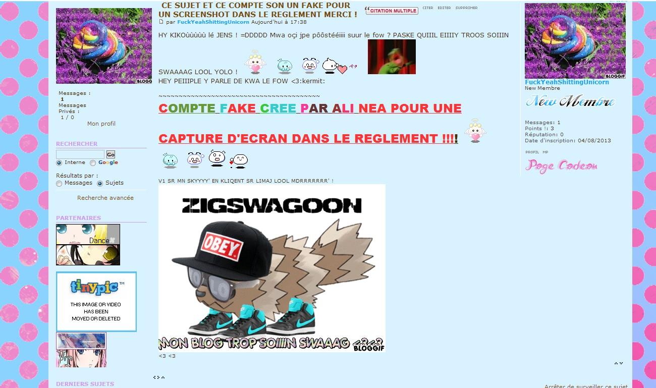Règlement [UPDATED] Swag_f10