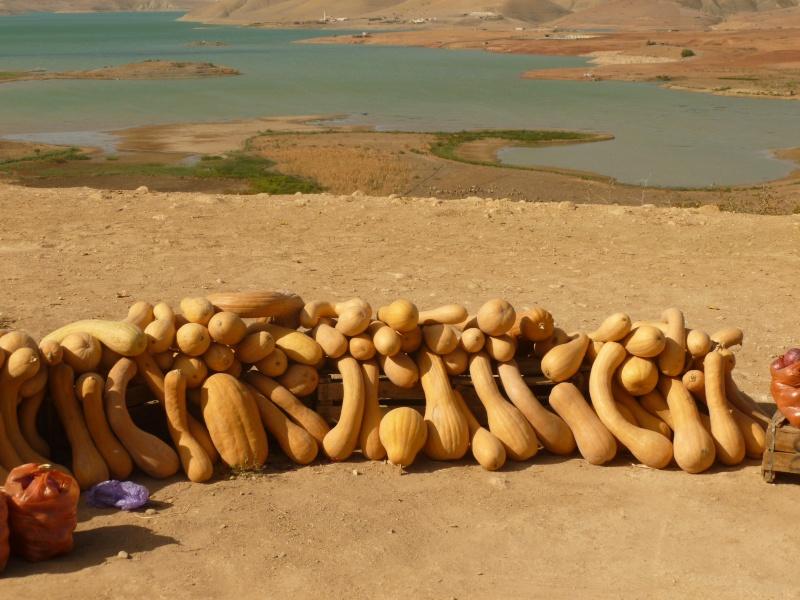 KEFTA  sur le bord de la route  Maroc_24