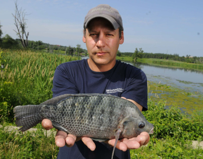 Check this story..a Blue Telapia caught in my towns river...lol Grand_10