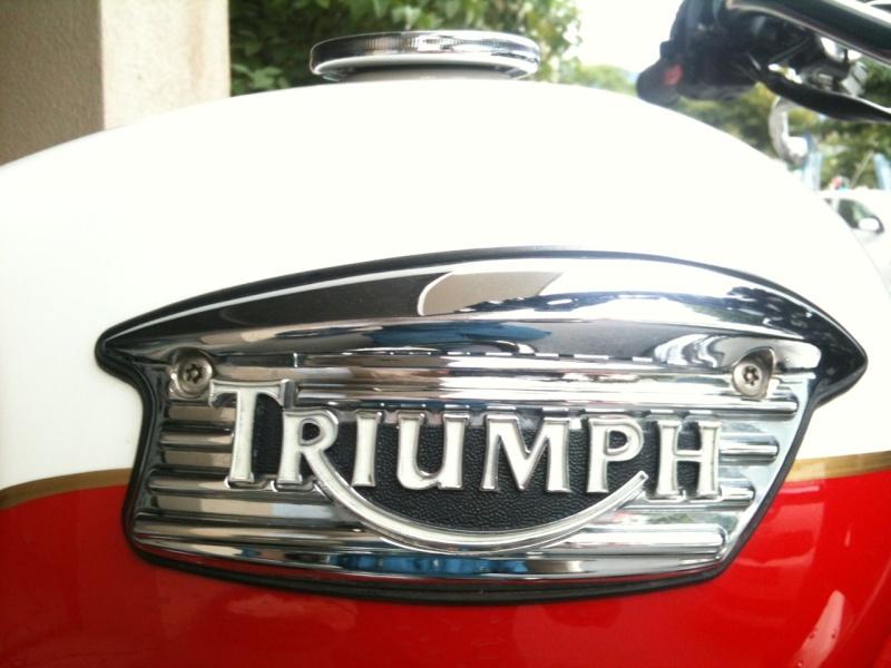 Ma Triumph Scrambler - Page 3 Logo10