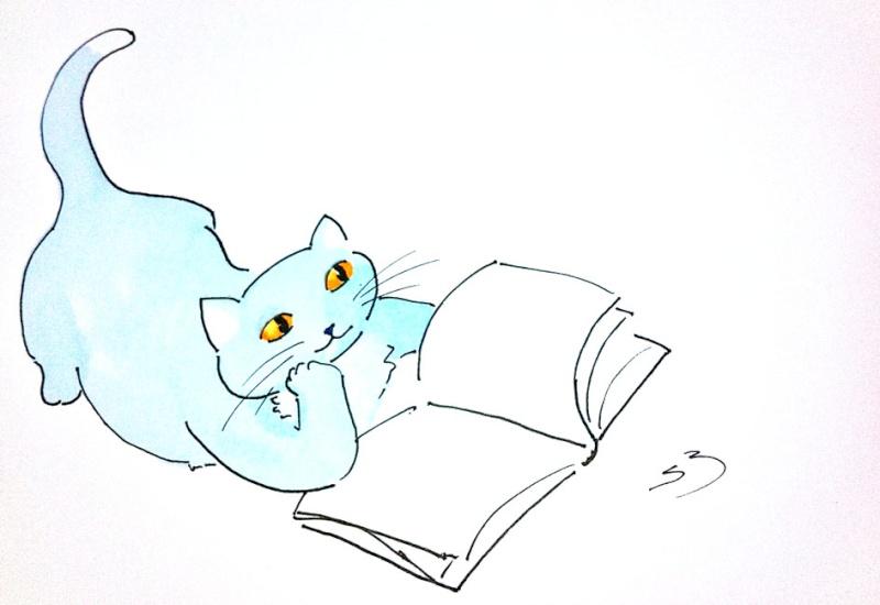 Histoires à lire tout seul en CP : Poky et Lucas Chat_q10